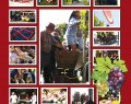 13 OTT: 5° Festa dell Pigiatura in Villa la Viagnazza (Montechiarugolo)